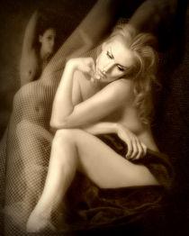 sensual fantasy von susan davies
