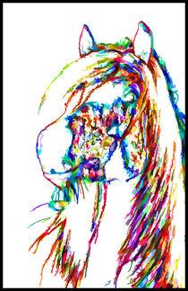Horse With A Sense Of Humor von lanjee chee