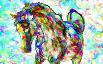 Horse in a paddock von lanjee chee