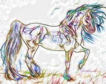 Beautiful Horse von lanjee chee