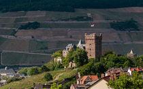 Burg Klopp von Erhard Hess