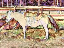 Saddle On Horseback 1 von lanjee chee