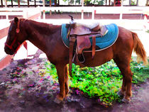 Saddle on Horseback 2 von lanjee chee