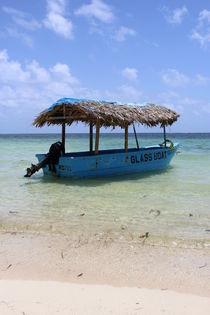 Caribbean Boat von Tricia Rabanal
