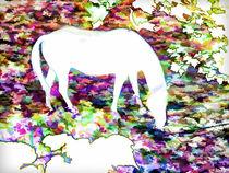 Horse grazing von lanjee chee