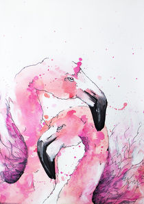 Flamingos by abrenner