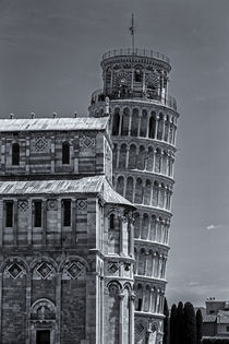 Torre di Pisa by David Pringle