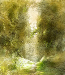 'Forest Path' by rambler