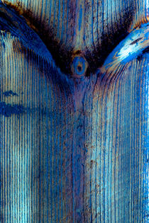 Der blaue Engel von Erwin Renken