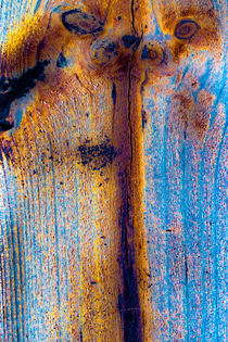 Holzstrukturen 2 von Erwin Renken
