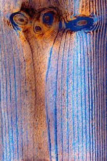 Holzstrukturen 3 von Erwin Renken