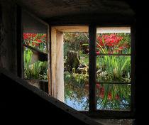 Frühlingsgartenfenster von Nikola Hahn