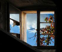 Herbstgartenfenster von Nikola Hahn