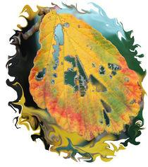 Herbst-Blattlöcher von Nikola Hahn