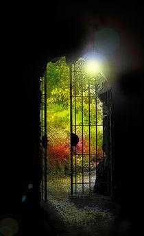 Tor zum Garten von Nikola Hahn