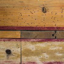 Holz 1 von Erwin Renken