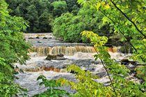 Aysgarth Upper Falls von gscheffbuch