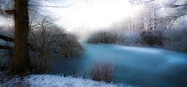 Winter am See von Erwin Renken