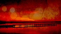Der Sonnenuntergang am Steinhuder von Clemens Greiner