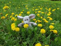 Homemade soft toy on the lawn by Vladislav Romensky