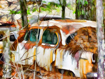 A rusty abandoned Car by lanjee chee
