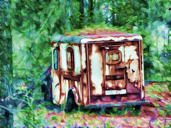 Forgotten-in-the-woods