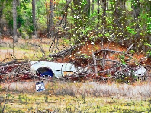 Sinking-abandoned-car