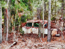 Vintage cars abandoned and rusting by lanjee chee