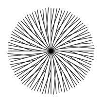 minimalvision 9 – Irgendwie bio / Somehow organic by minimalvision