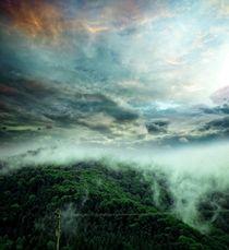 Carpathian Fog  von florin