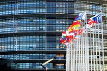 Unser Europa-Parlament, 2 by Hartmut Binder