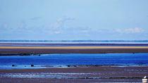 Blue waterland von Heike Burmester