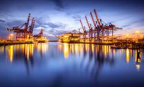 Waltershofer Hafen IV by photoart-hartmann