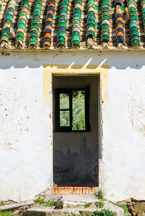 Traditional vintage andalusian roof tiles and doorway at ruin. Andalusia, Spain. by Perry  van Munster