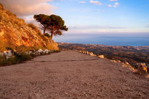 Scenic mediterranean landscape by Perry  van Munster
