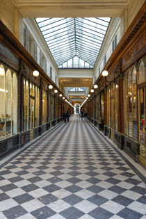 Covered passage Galerie Vero-Dodat near Palais Royal, gallery, Paris, France. von Perry  van Munster