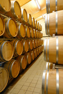 Oak Barrels Wine Estate Chateau Carignan Bordeaux France von Perry  van Munster
