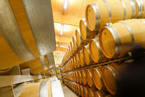 Oak Barrels Wine Estate Chateau Carignan Bordeaux France by Perry  van Munster
