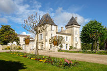 Bordeaux Chateau Carignan by Perry  van Munster