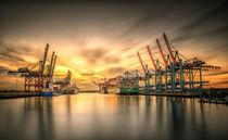 Waltershofer Hafen V by photoart-hartmann