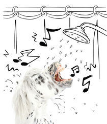 "Pony-Power ""Shower"" by cavallo-magazin"