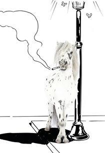 """Pony-Power """"Stranger"""" by cavallo-magazin"""