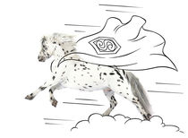 "Pony-Power ""Superman"" by cavallo-magazin"