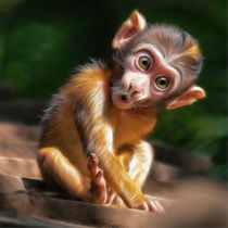 baby monkey von photoplace