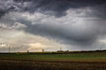 Rain on a Sunday by Vicki Field