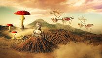 Mushroom by Fenelon Neto