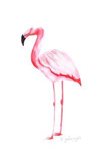 Flamingo 2 von Julia Reyelt