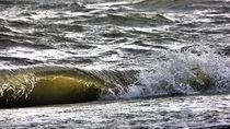 Wellenrauschen von Heike Burmester