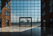 Tor zur Welt by Sandro S. Selig