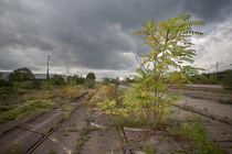 Bioreservat Güterbahnhof by Peter Jean Geschwill